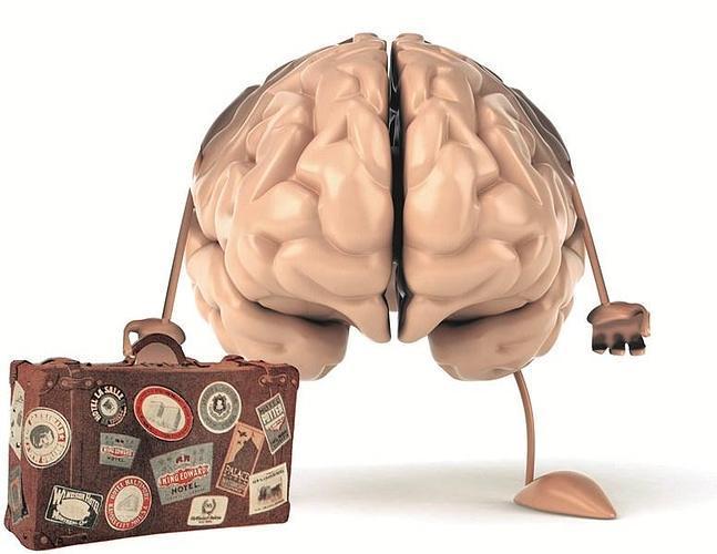 Fuga de cerebros en Alemania. La entrevista