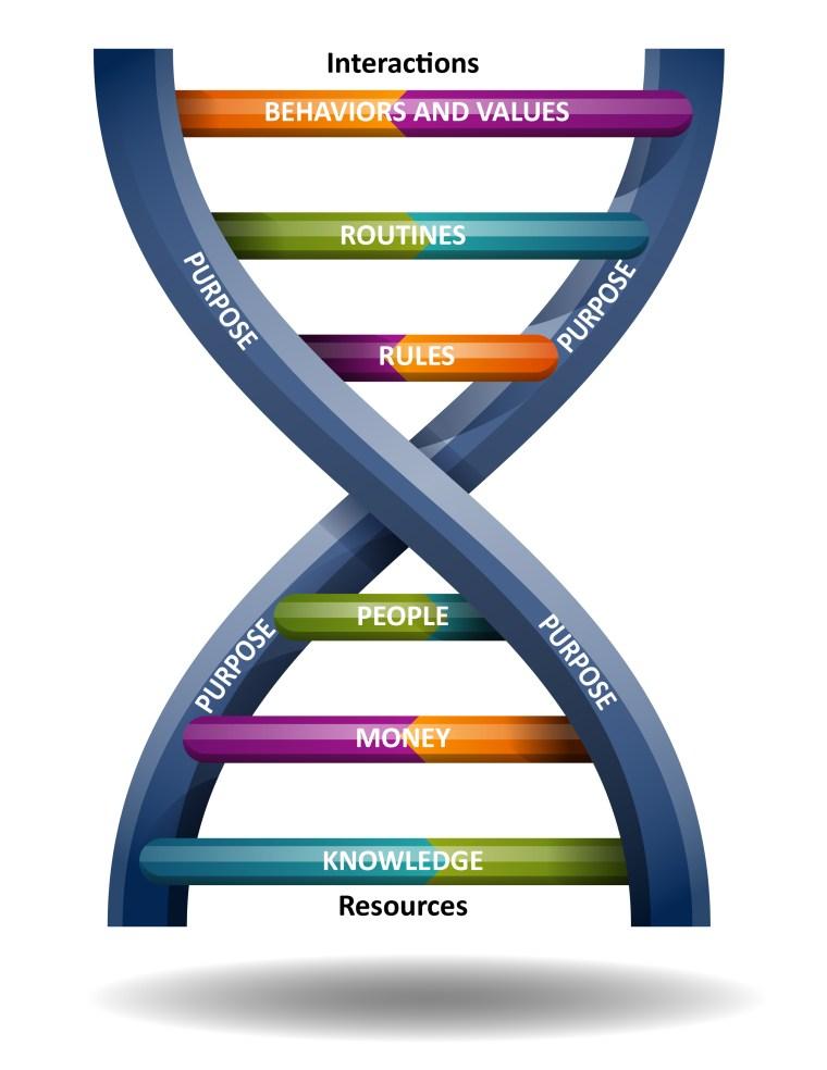 Leadership DNA (small)