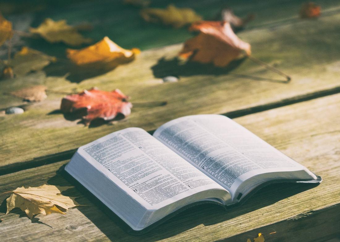 oração e leitura da Bíblia