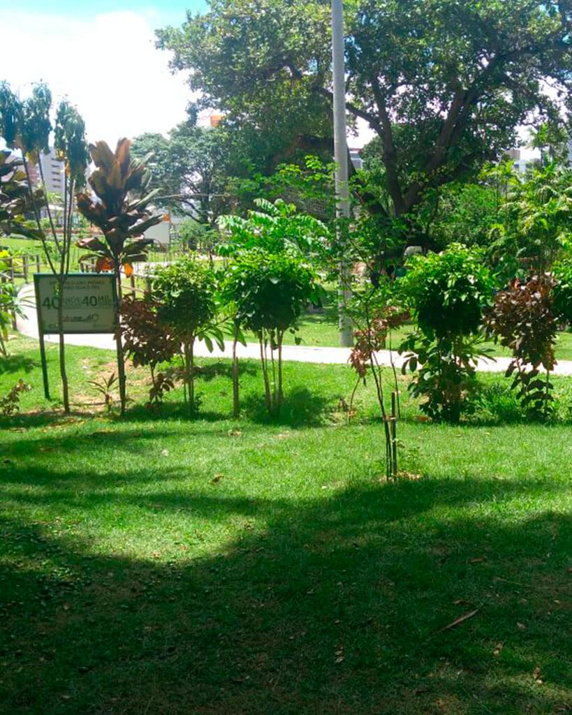 Piquenique no Parque do Cocó