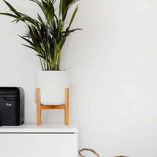 vaso de planta, cesto simples