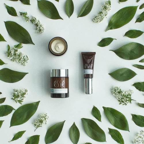 maquiagem e folhas verdes