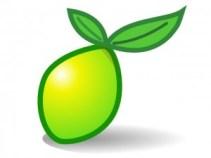 Lime Survey: Sistema de encuestas OpenSource