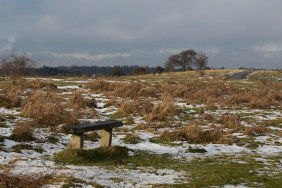 farthing-downs-14-1-17-lo-res-blog-8