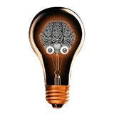 That Genius in the Brain (Einstein's Brain)