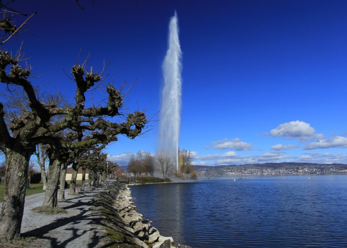 08 – The Amazing Richterswil Fountain