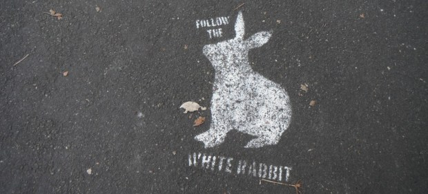 follow white rabbit stencil