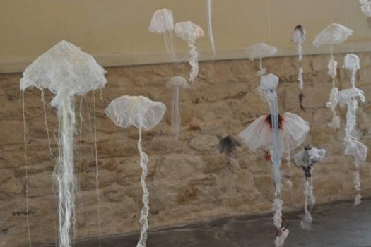 Installation Medusa
