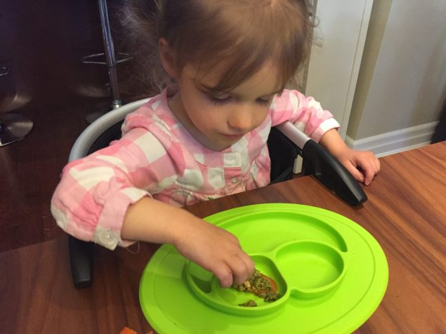 Reasons Why Kids are Picky eaters
