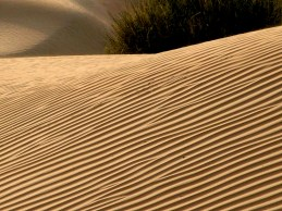SandDunes1.72dpi