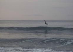 Playa Hermosa Dawn070114_14