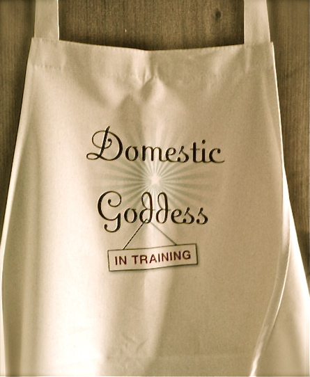 domestic goddess in training apron danielle raine