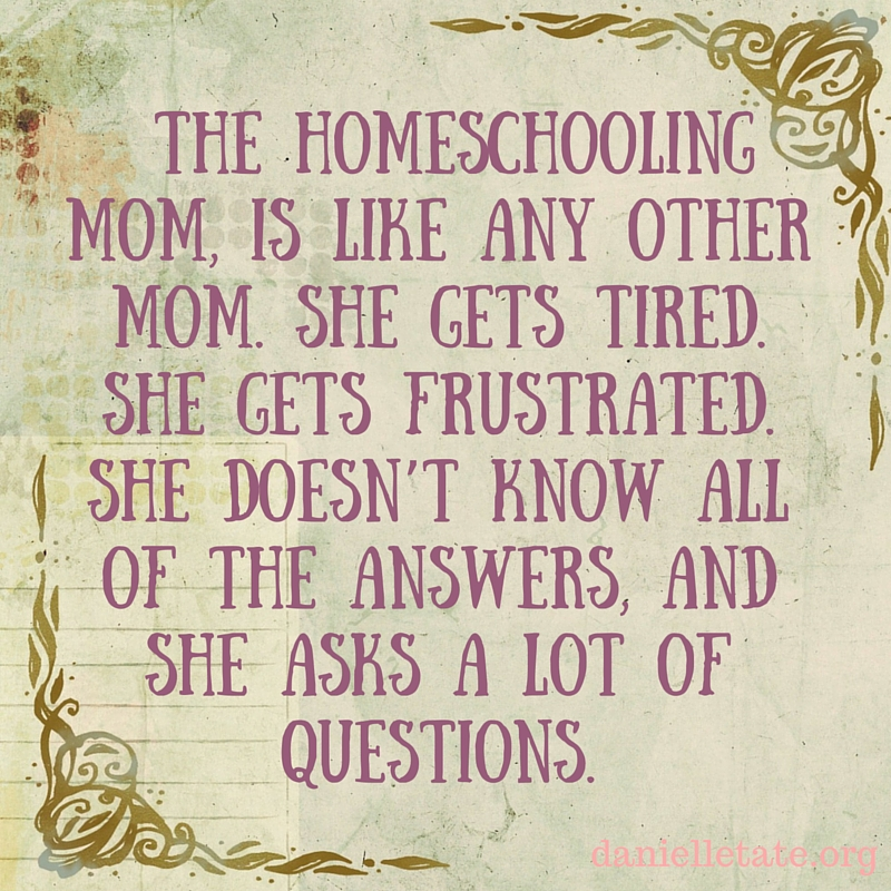 the homeschooling mom is like any other