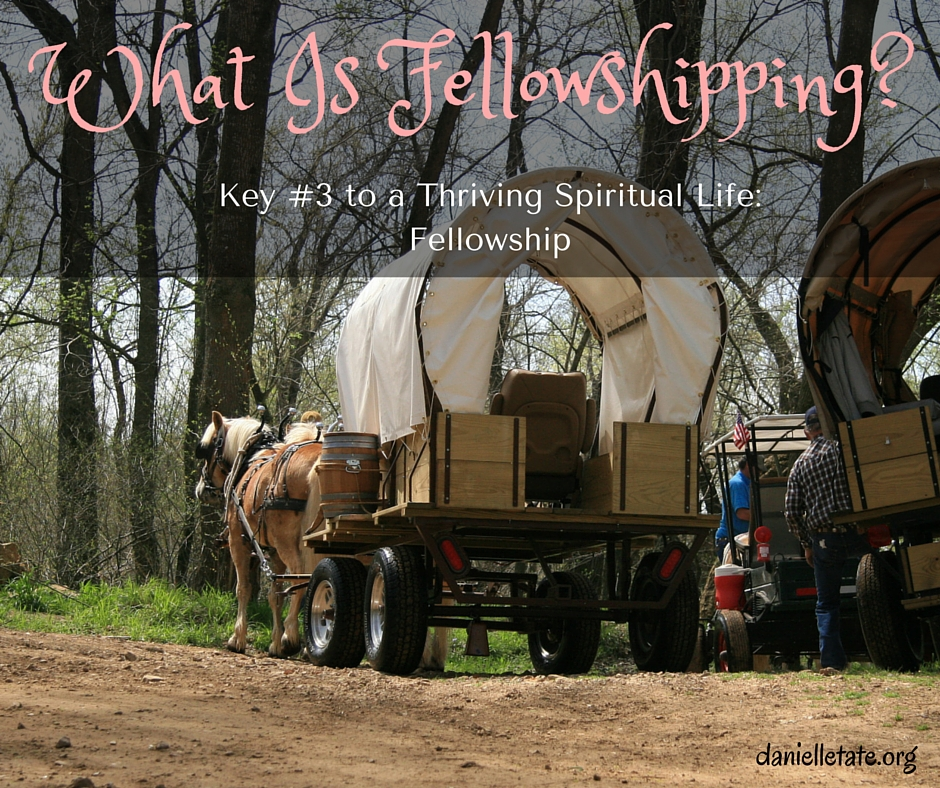 What is fellowshipping
