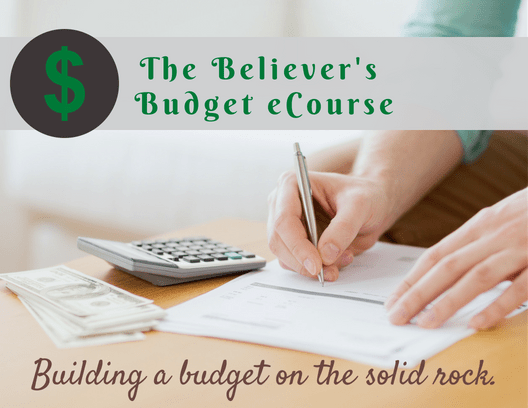 Believers budget ecourse