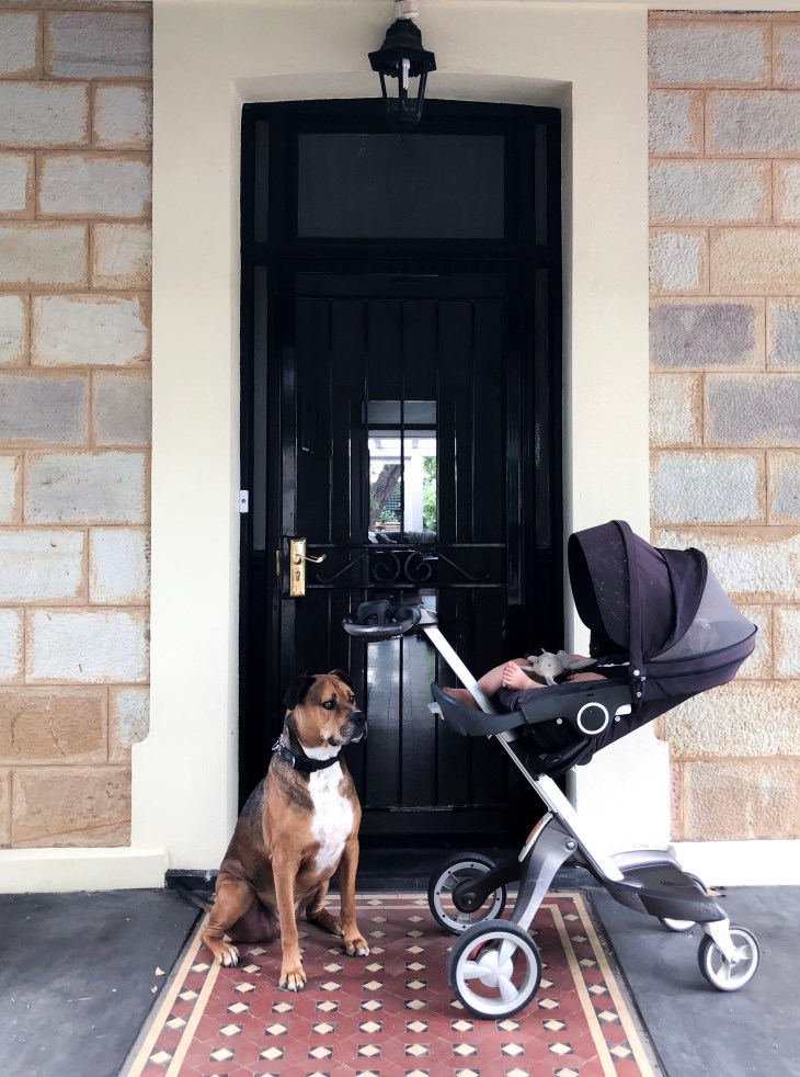 adelaide airbnb getaway lifestyle blogger melbourne stokke xplory sleeping baby