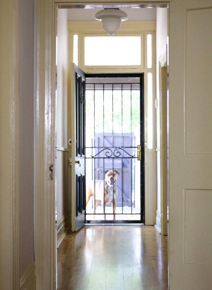 adelaide airbnb getaway lifestyle blogger melbourne sandstone cottages hallway wooden floorboards