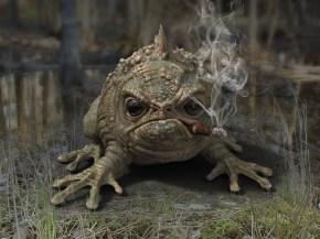 frog_A.15_testb
