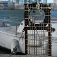 Le port de Port la Nouvelle
