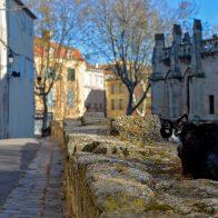 Béziers Rue de la Petite Jerusalem