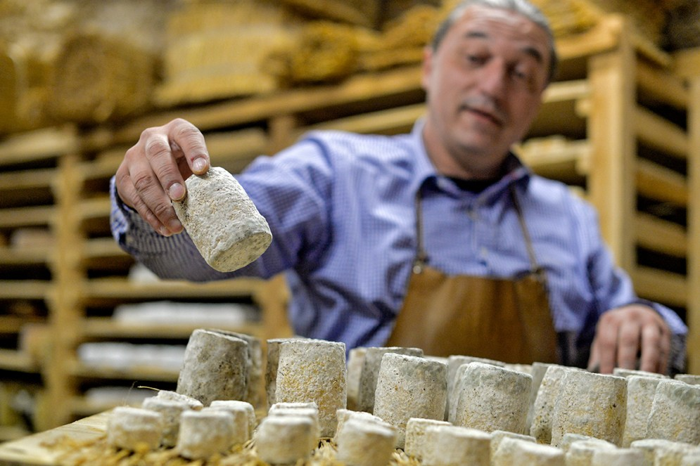 Affinage Fromager Béziers