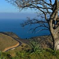 Route de cohons Bannyuls