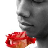fleur-rouge-22