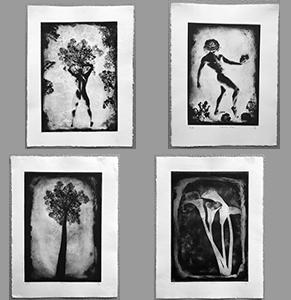 Photogravures