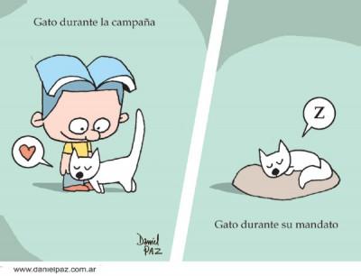 """vote-gato"" por Daniel Paz"