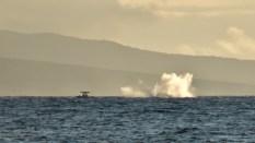 Maui (169 of 2119)