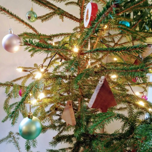 Weihnachtsbäume   Daniél Pfaar Moebelbau