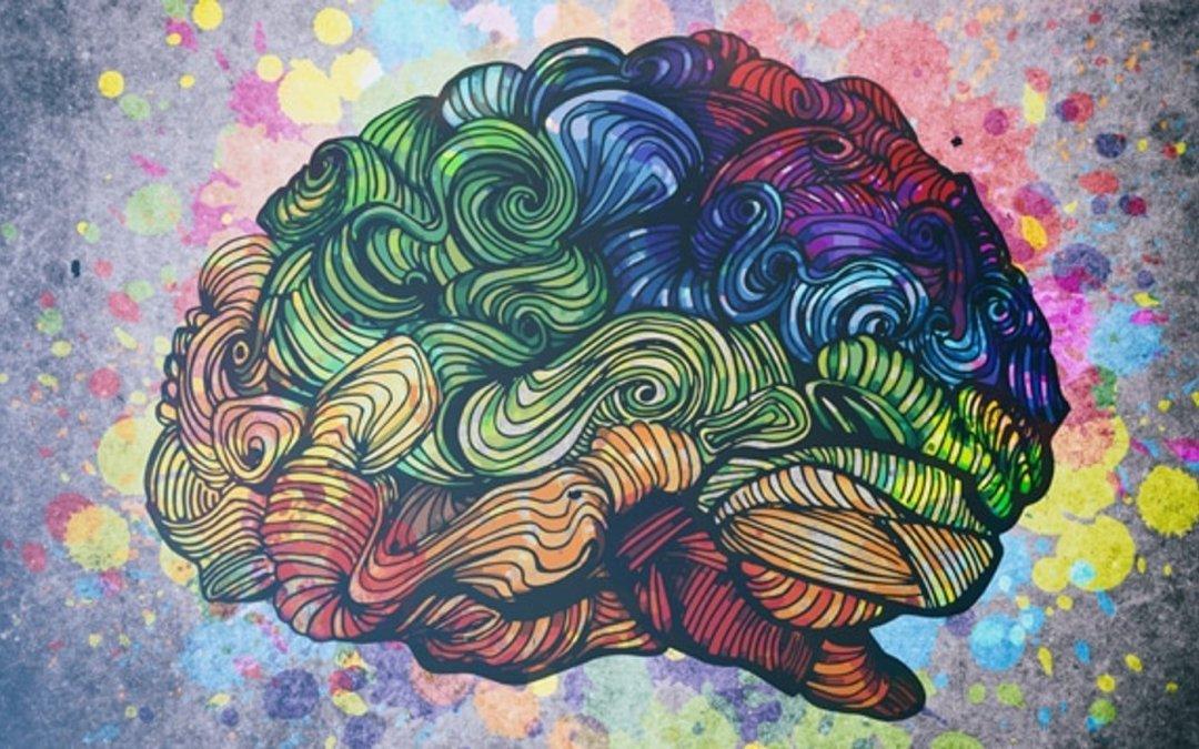 gratitude brain