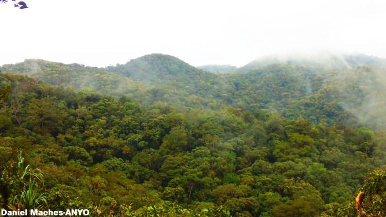 Mount Kalatungan is one of the off-beaten tourist spots in Mindanao