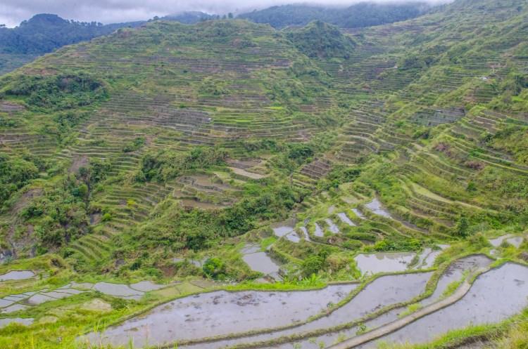 Rice terraces of Belwang, Sadanga