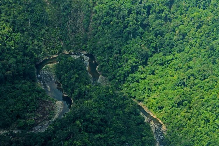 Palanan Rainforest is one of the tourist spots in Isabela province.