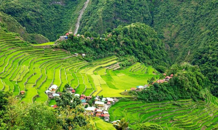 Behold Batad Rice Terraces