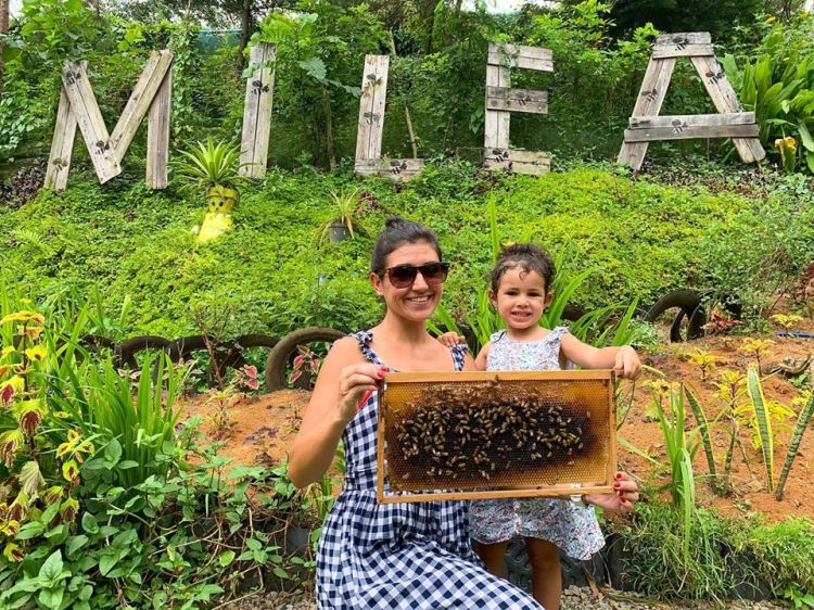 Milea Bee Farm is one of the famous tourist spots/attractions in Batangas province.