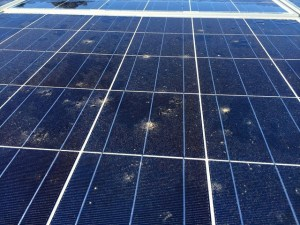 dirty solar panel