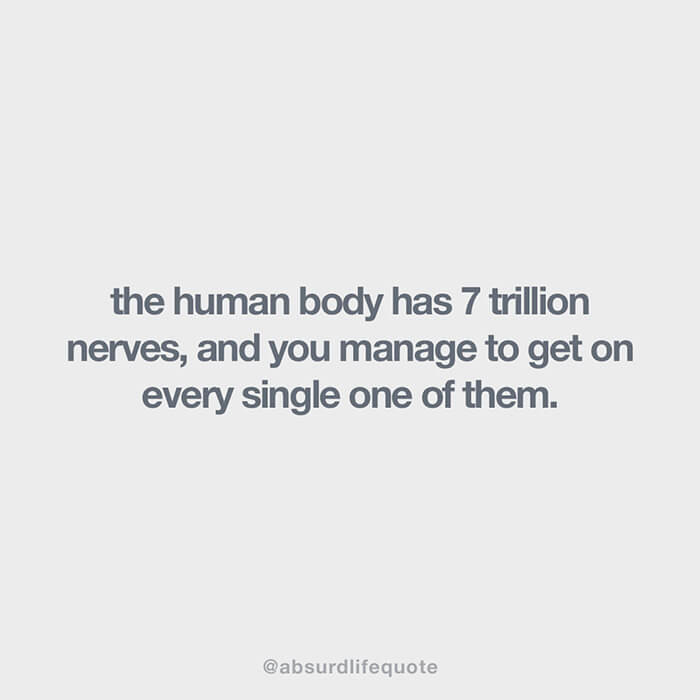 """""""The human body has 7 trillion nerves, and you manage to get on every single one of them"""""""
