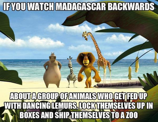 What if movies like Madagascar were watched in reverse?