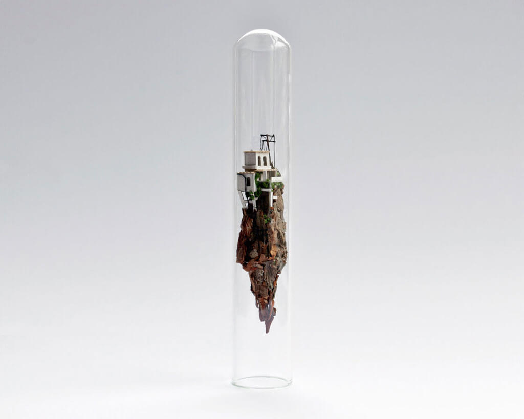 Rosa de Jong tiny worlds in glass tubes