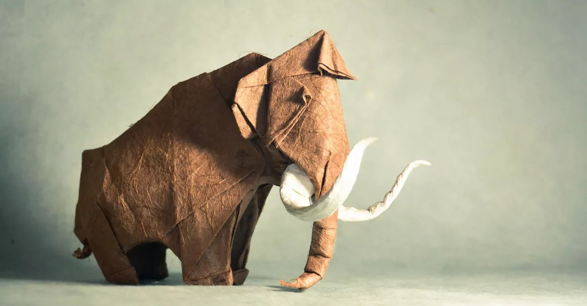 Amazingly delicate, life-like origami creations