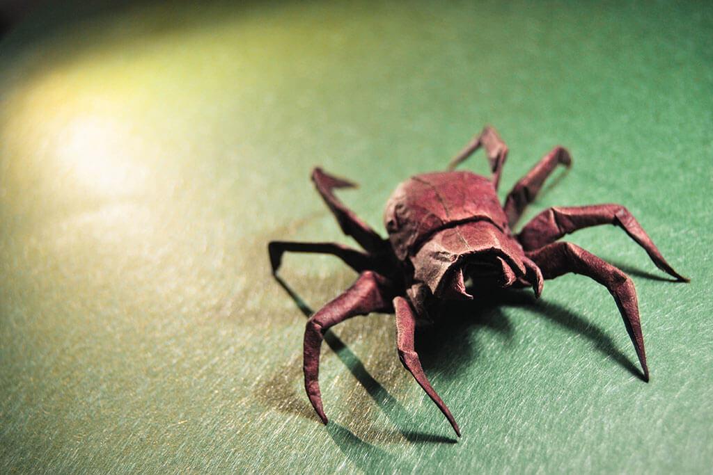 Origami spider by Gonzalo Garcia Calvo