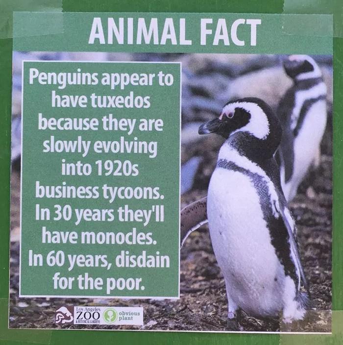 fake-animal-facts-los-angeles-zoo-3