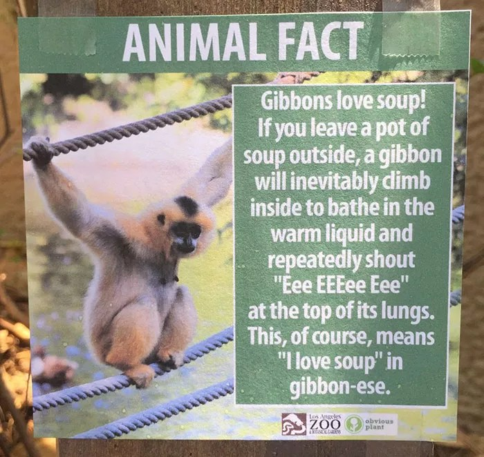 fake-animal-facts-los-angeles-zoo-6