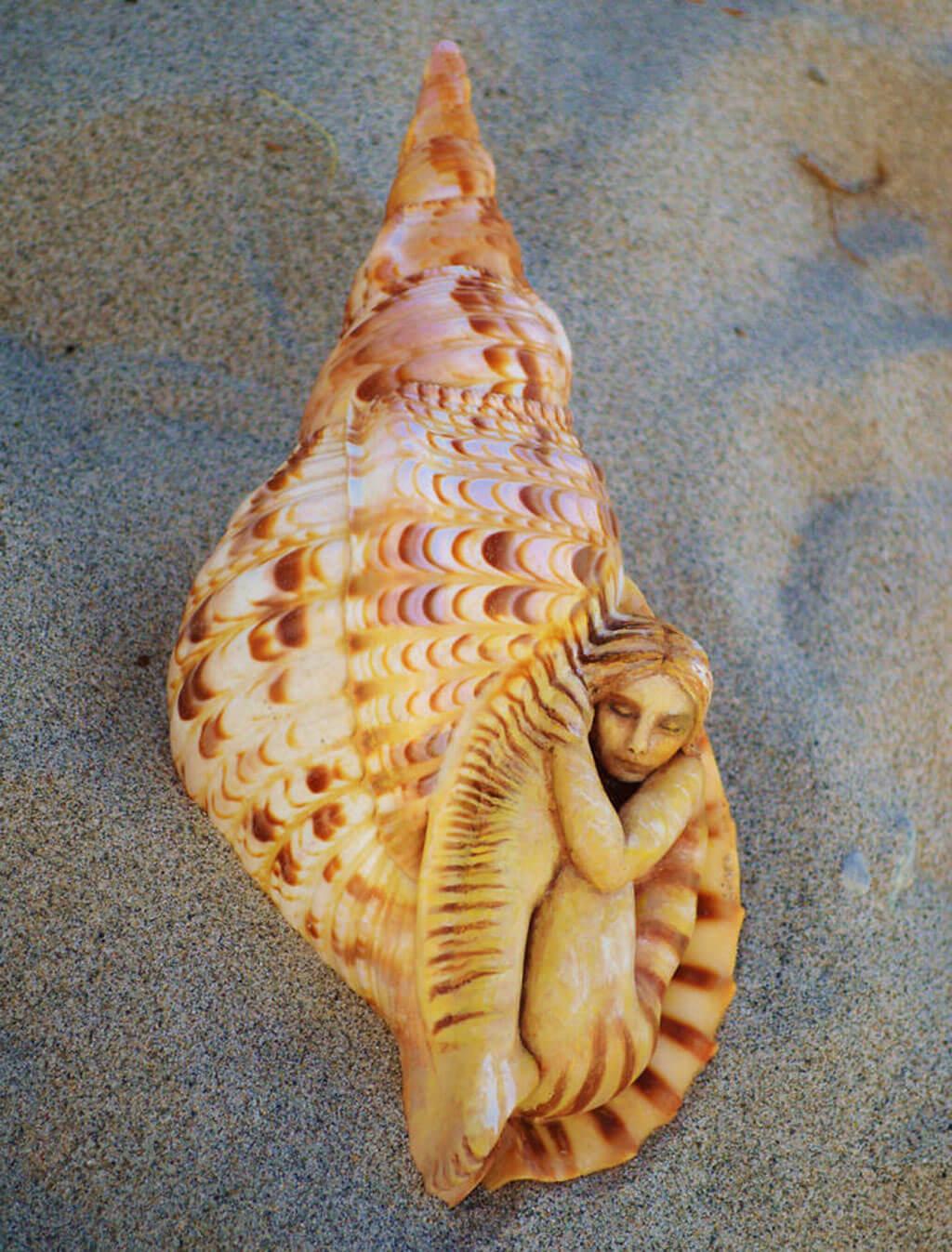 Carved shell by Debra Bernier