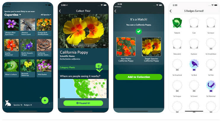 Seek app identifies plants and animals in your photos