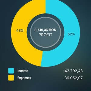 Income Expenses