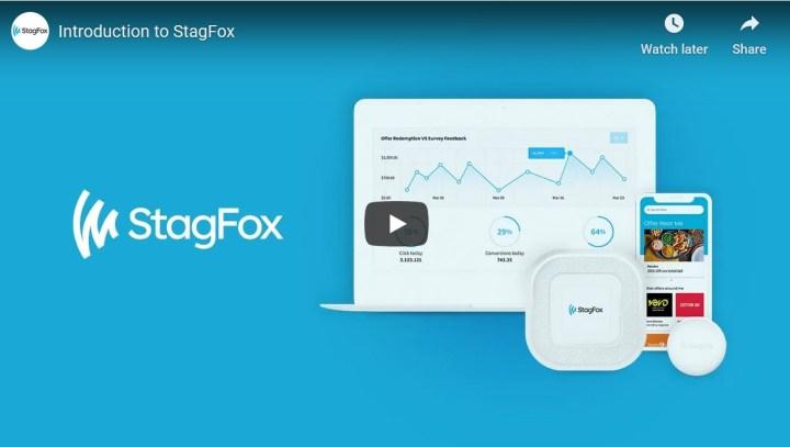 StagFox Video Scripts