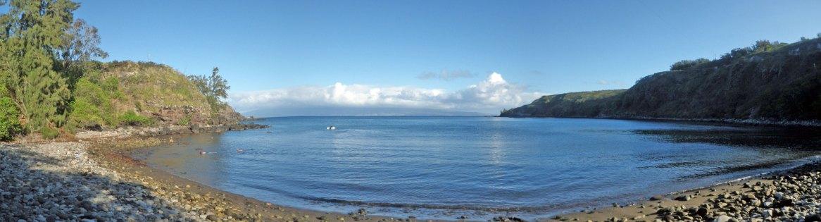 Honolua Bay study site, Maui
